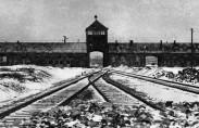 belgium-holocaust