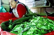שוק עלי קוקה בבוליוויה (תצלום: Yan Boechat)
