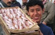 palestinian-economy-monocle12